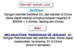 Alternatif setelah Lulus Kuliah di China jenjang D3
