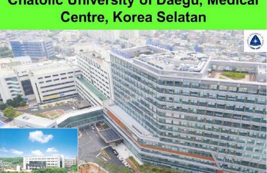 Beasiswa kuliah Chatolic University of Daegu Medical Centre Korea Selatan