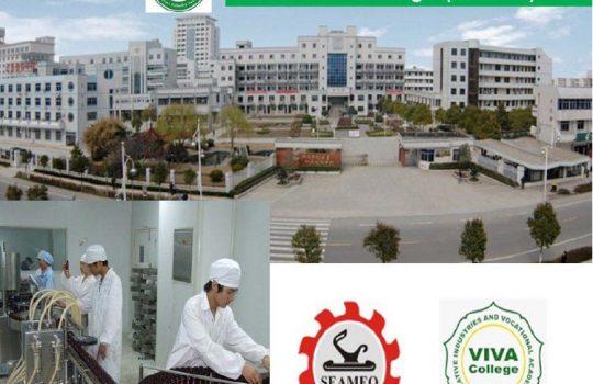 beasiswa china d3