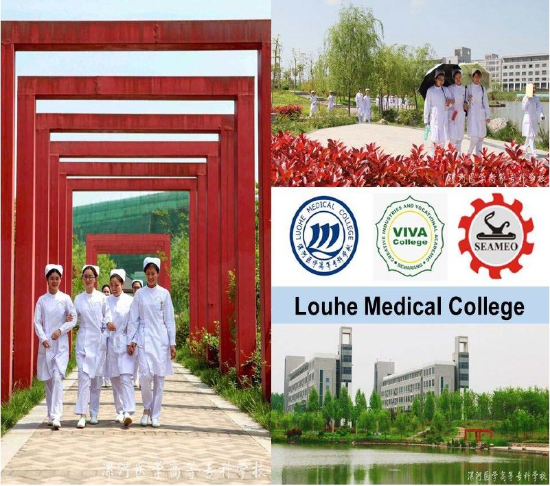 beasiswa china d3 Louhe Medical College
