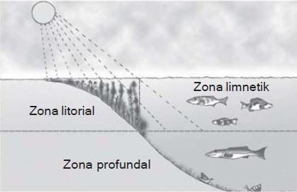 ekosistem air tawar lladskll