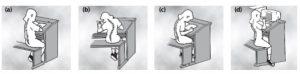 Tulang belakang (a) normal (b) skolisosis (c) kifosis dan d(d) lordosis
