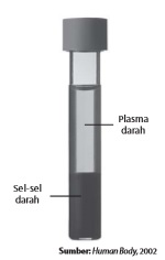 Komposisi darah setelah disentrifugasi