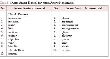 asam amino nonesensial adalah asam amino yang dapat disintesis oleh tubuh