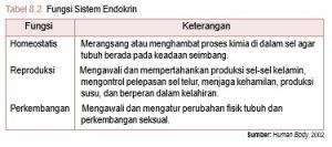FungsiSistem endokrin