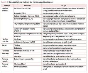 fungsi hormon kelenjar endokrin