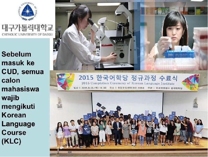 kuliah di Chatolic University of Daegu Medical Centre Korea Selatan