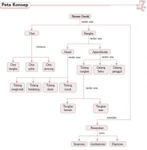 peta konsep bab 3