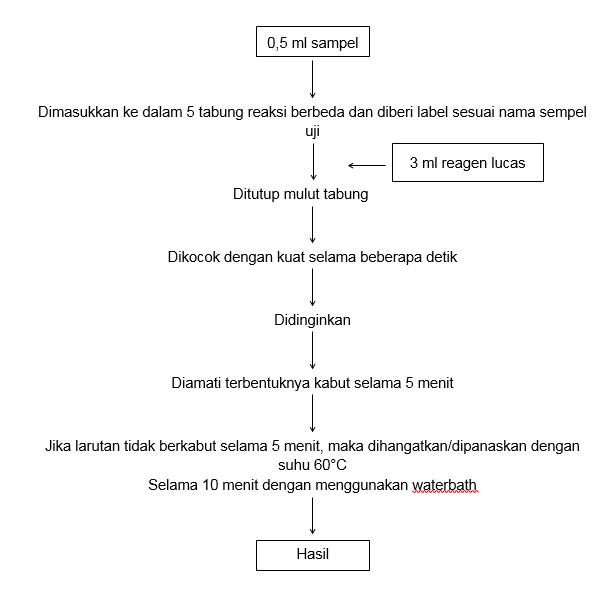 Laporan praktikum kimia organik identifikasi gugus fungsi alkohol diagram alir tes lucas ccuart Images